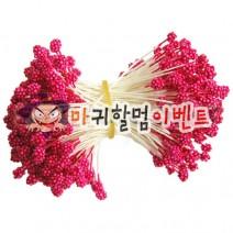 오디씨-꽃수술(레드)