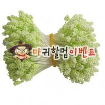 오디씨-꽃수술(라임그린)