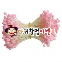오디씨-꽃수술(핑크)