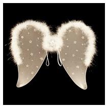 흰색별무늬천사날개