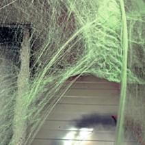할로윈 거미줄(그린)